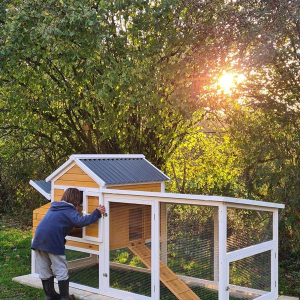 Poulailler toit renforcé en plastique 6 à 8 poules